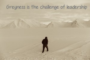 Greyness is the challenge of leadership