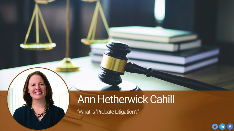 "What is ""Probate Litigation""?"