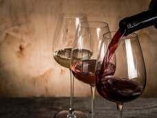 Istrian Wines