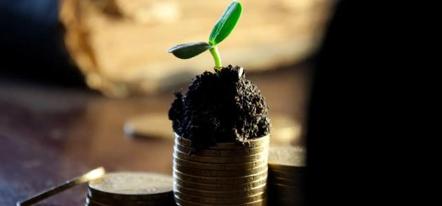 Dividende im Fokus: Dividendenstrategie für 2018