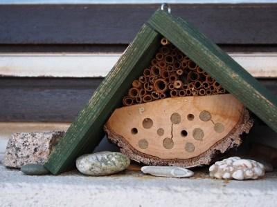 méhecske hotel