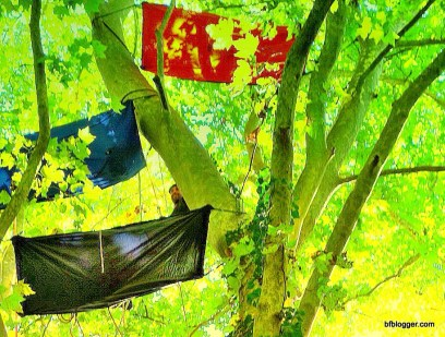 Tree sports in Uzès