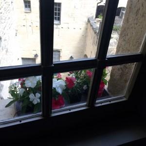 Closed window in apartment