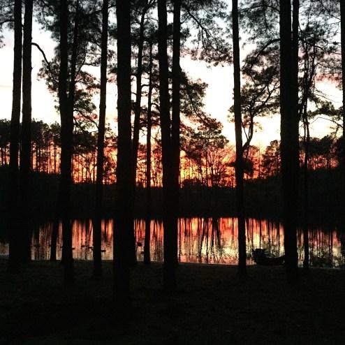 Camp Rosie, North Carolina