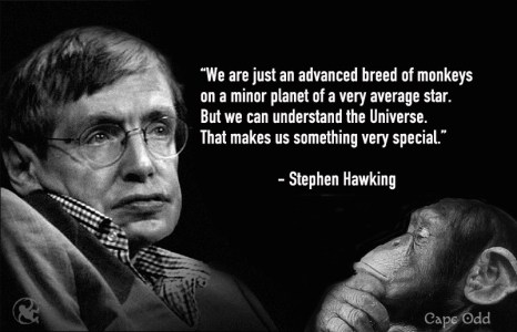 stephen-hawking-space-monkey