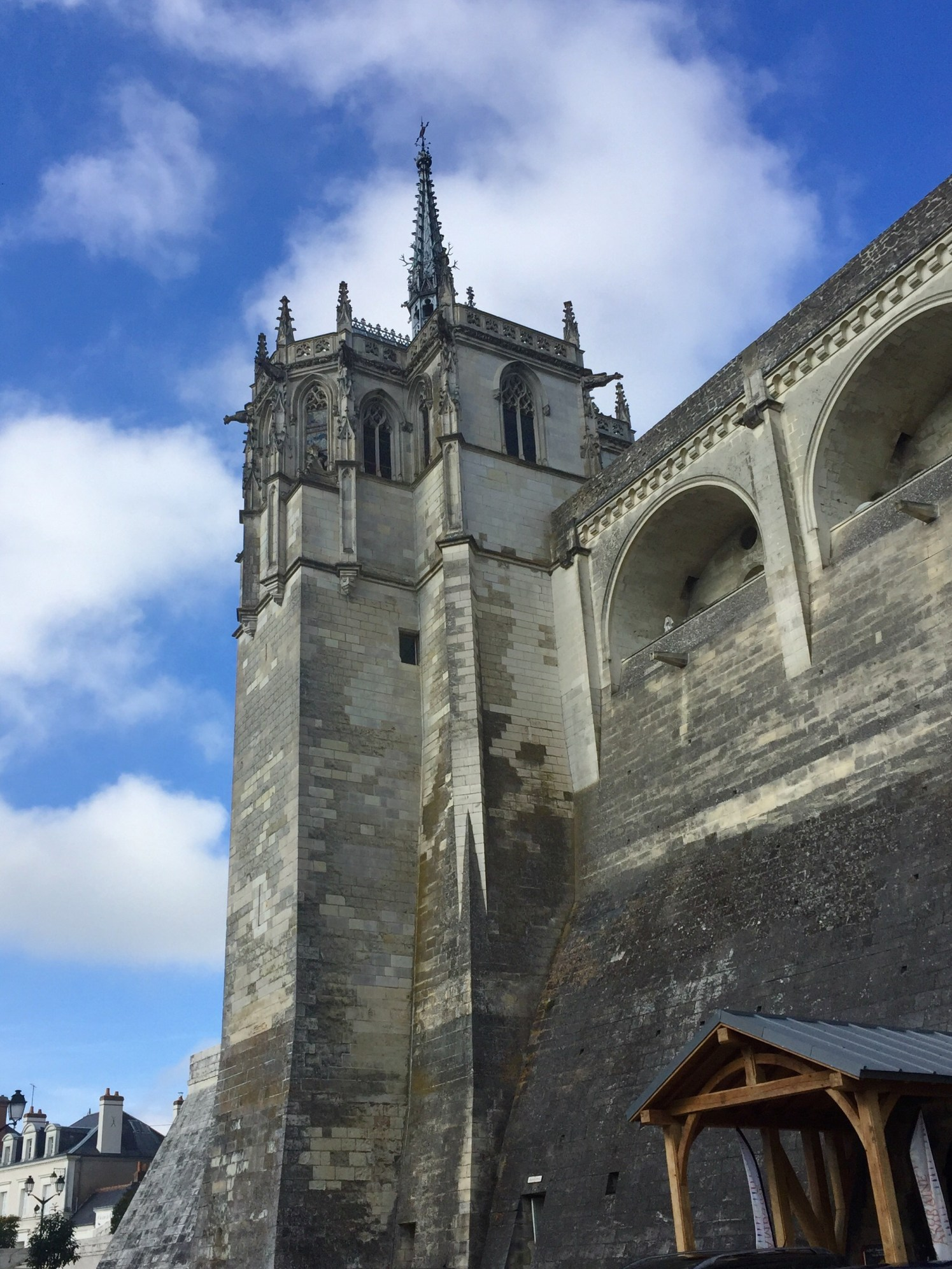Chateaus and vineyards of the Loire Valley: Ambroise