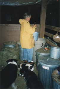 Anne Priest in feed room New York State
