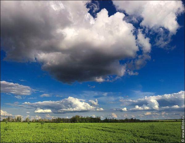 Летний пейзаж высокого разрешения фото большого размера