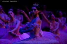 Balletto di Mosca, La bella addormentata, foto 48
