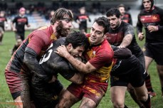 Rugby photography, #61