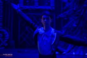 Moscow Ballet, The Nutcracker, photo 7
