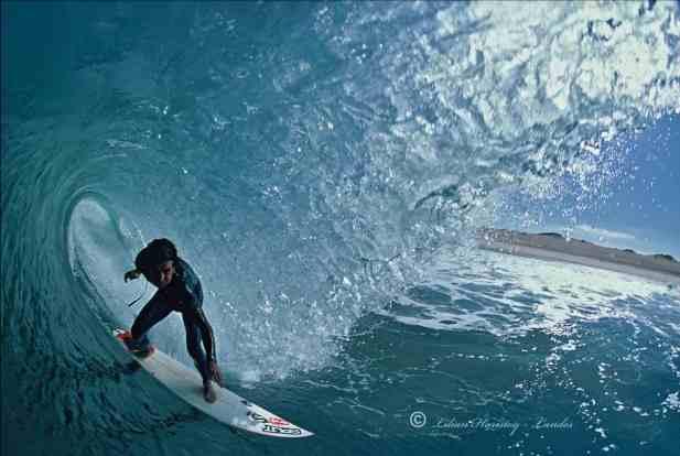 Haristoy-surfer