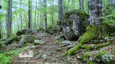 Пътеката-към-пещерата-на-Свети-Иван-Рилски