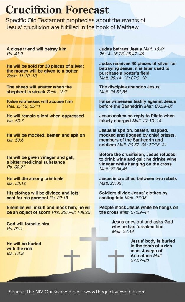NIV QuickView Bible - Crucifixion Forecast