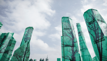 Tall city buildings with trees climbing up depicting net zero carbon emissions