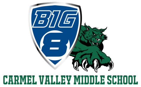Big8-CV-header