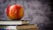 BGKontakti_book_and_apple