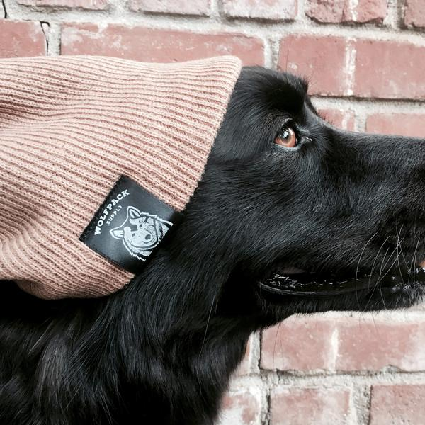 Wolfpack Beanie, $22, Photo Cred: Wolfpack Dog Leashes