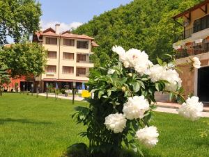Хотелски Комплекс Делта