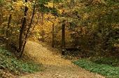 Екопътека Пътека на Здравето