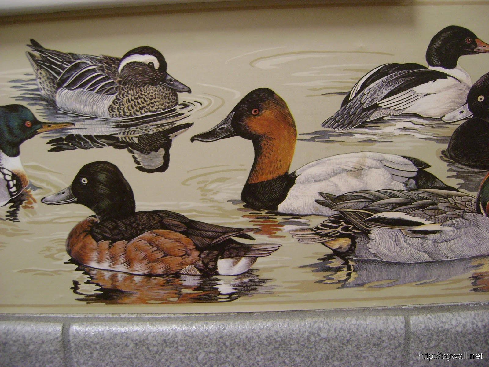 Bird Themed Wallpaper Background Wallpaper Hd