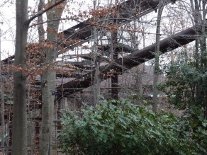 Here's a view from near the ride's entrance. As you can see, when these pictures were taken, they hadn't made it all the way to the top with the scaffolding yet.