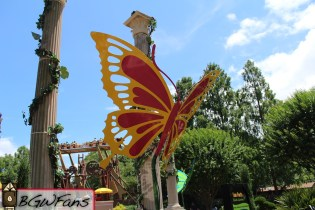 A better look at the red and yellow butterfly