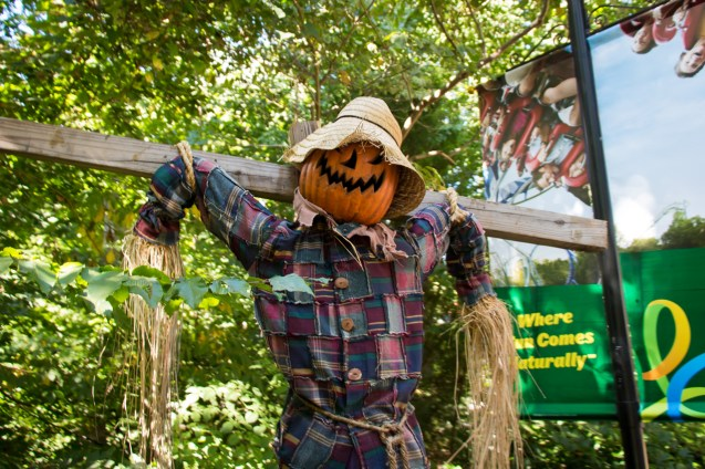 It's harder to take a scarecrow seriously with a hat like that