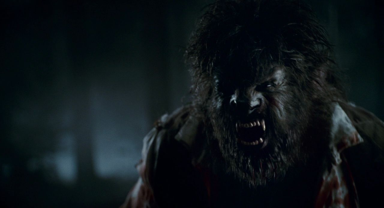 Image result for the wolfman