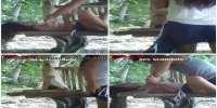 Bokep Indo Ngentot Perkosa Di Kebun