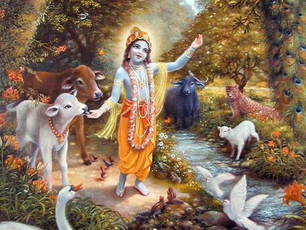 WHERE IS SRIMATI RADHARANI'S LILA-BHUMI?
