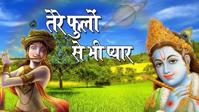 तेरे फूलो से भी प्यार !! Krishna Bhajan !! Peaceful Bhajan #ShriAmitKrishanShastrijimaharaj