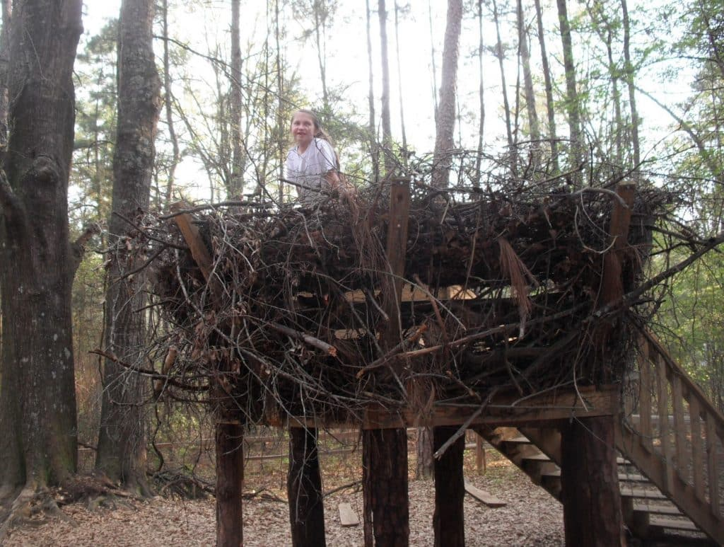 Connect to Your Coast and the Kreher Forest Ecology Preserve and Nature Center on October 27th