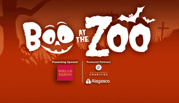 Last chance for you to Boo at the Zoo this October