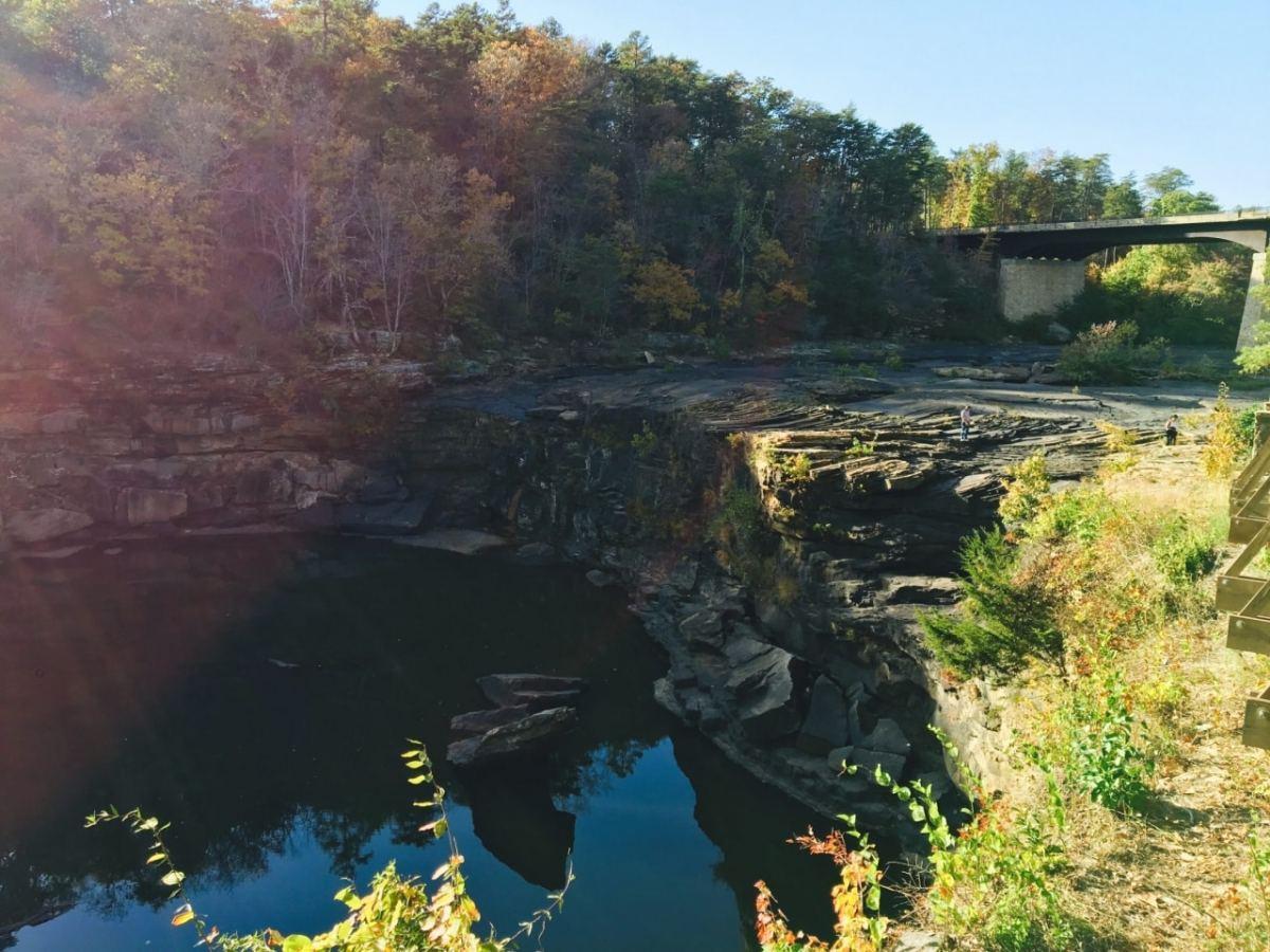 Alabama weekly nature roundup – October 8-14, 2016