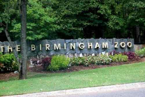 birmingham zoo - birmingham al