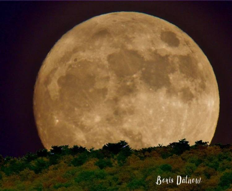 Birmingham, lunar eclipse, moon