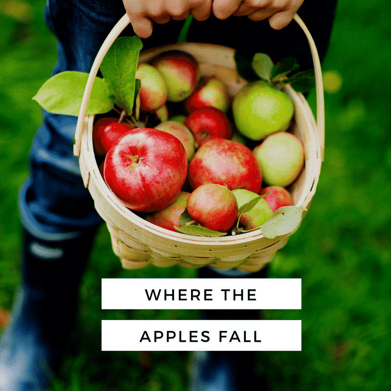 Try a fun day trip to one of Alabama's orchards