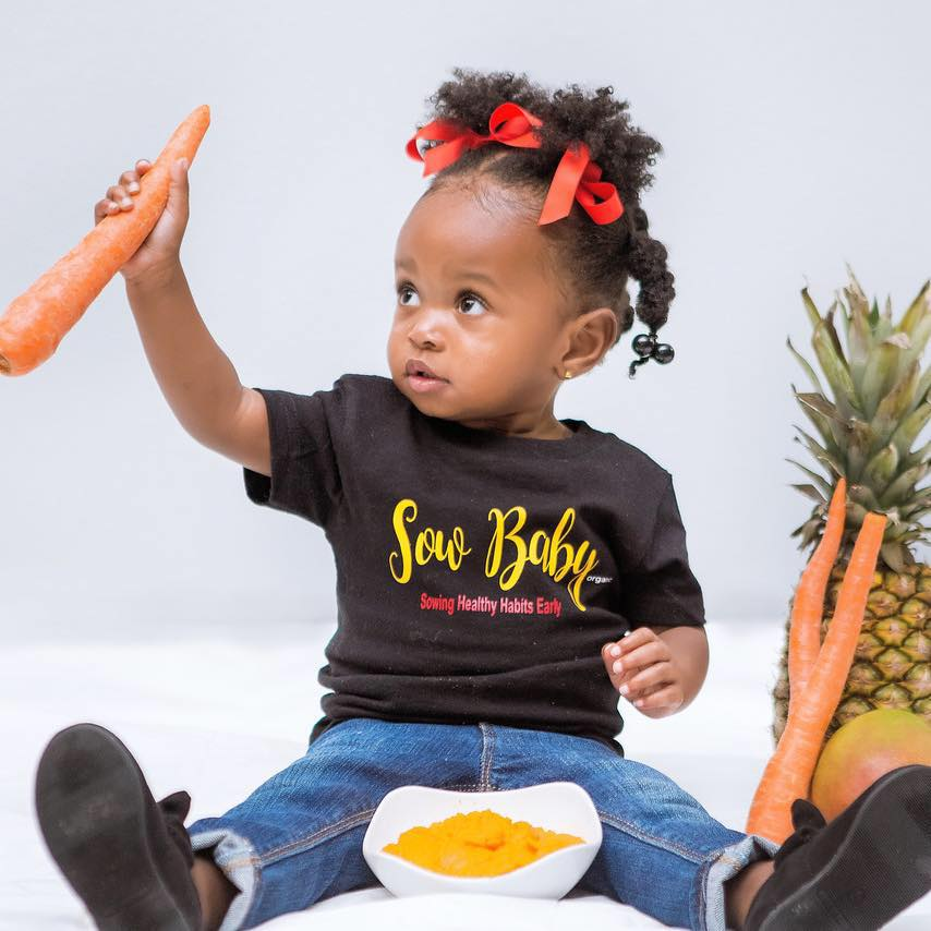 SowBaby introduces Locally made Organic Baby Food to Bham