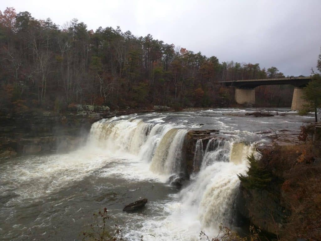 Nature Roundup January 5th edition – brought to you by JSU Little River Canyon Center