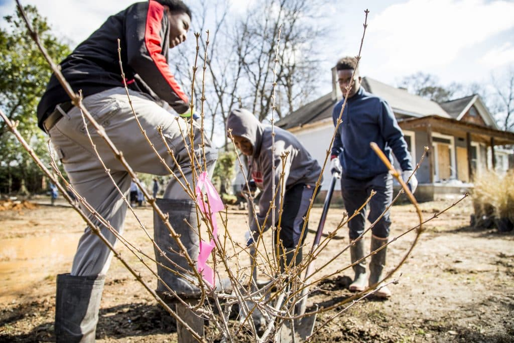 Turning a vacant lot into a green oasis – TNC's urban program featured in Huffington Post