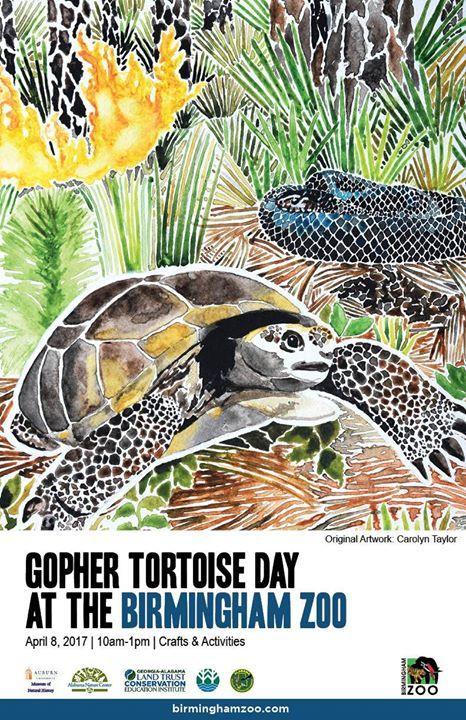 Gopher Tortoise Day Birmingham AL Birmingham Zoo