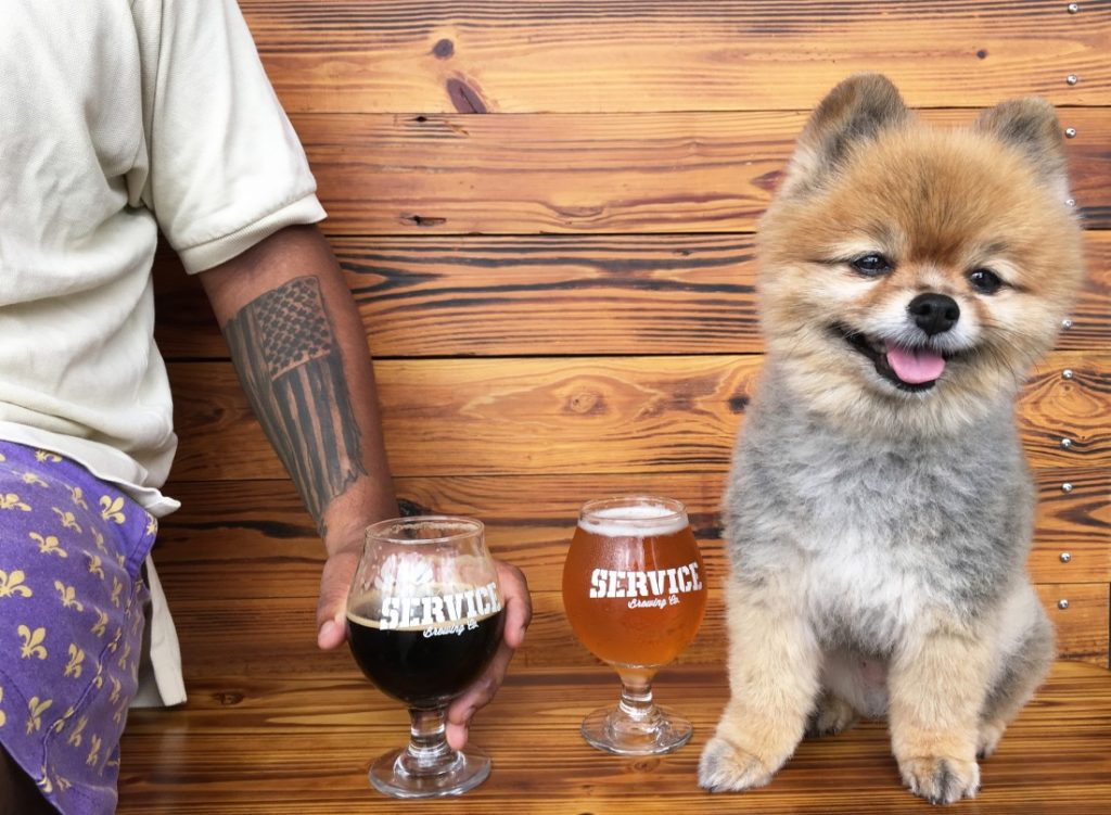 5 Five Bham Dogs you will see at your local breweries Birmingham AL