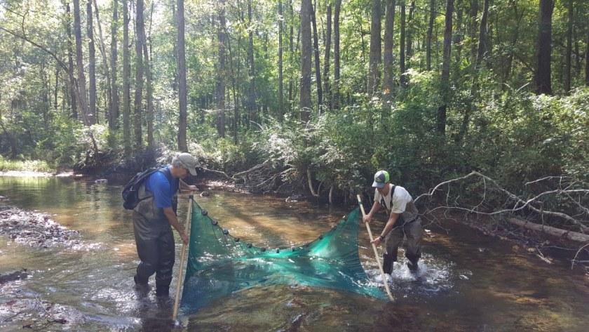 Freshwater Land Trust