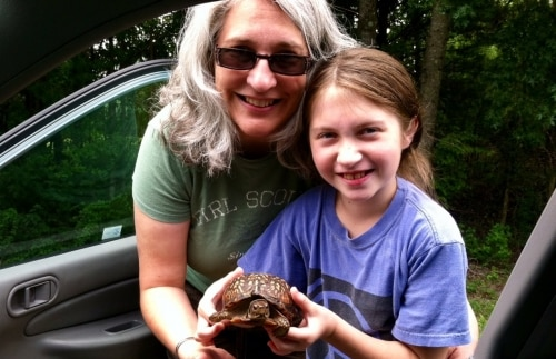 Turtle Alabama
