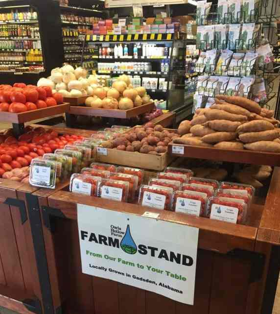 Birmingham, Organica Harvest, Birmingham groceries, Birmingham grocery stores