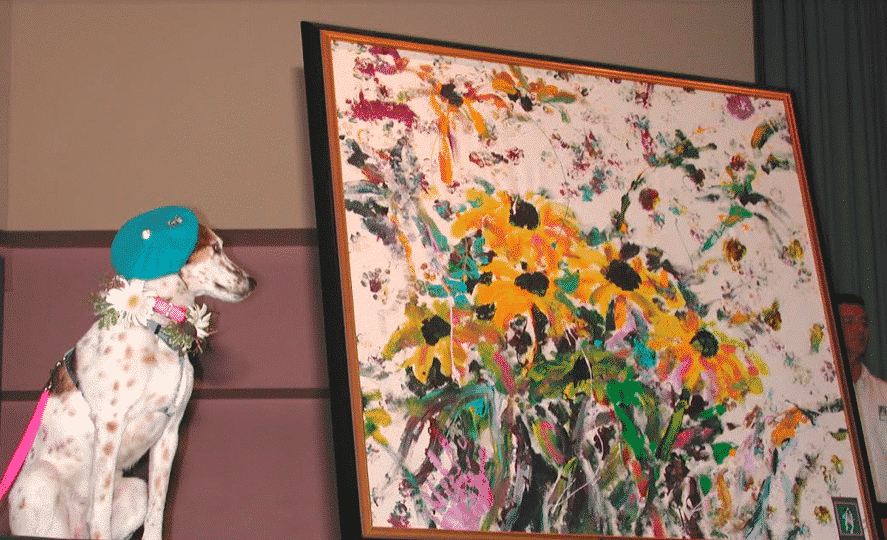 Picasso Pets