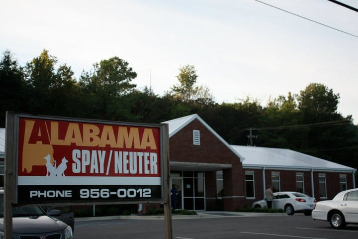 Birmingham, Alabama, Low-Cost Spay and Neuter story