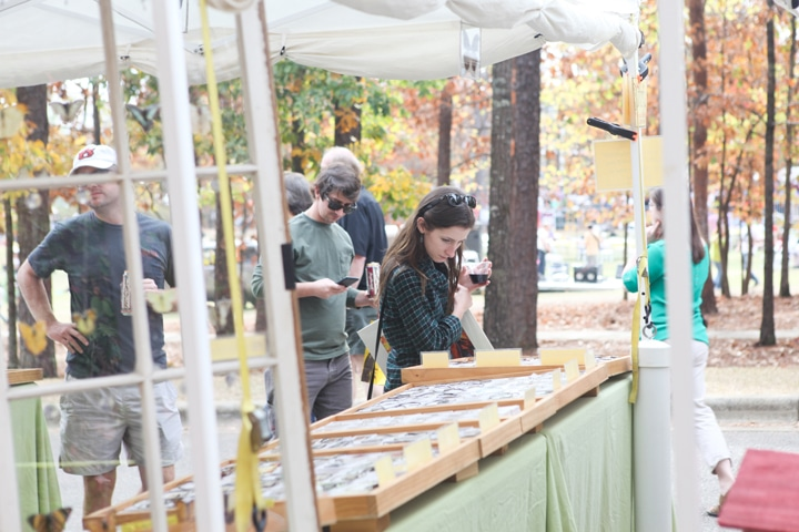 Moss Rock Festival, on November 3 and 4, is Birmingham's only eco-creative arts festival and features a beer garden, smart living area and nature-inspired art