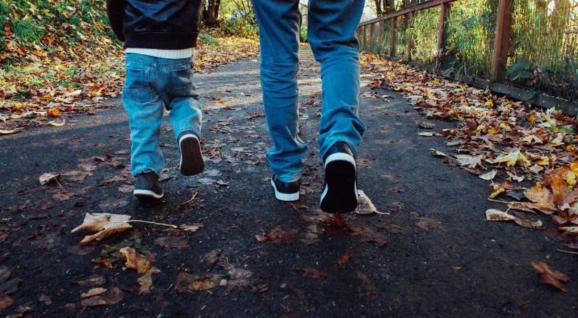 Father, son, walking, fall, autumn, leaves
